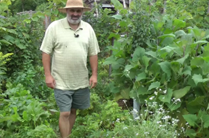 sssFeatured_permaculture