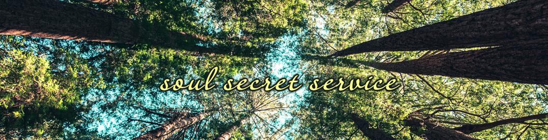 soul secret service logo
